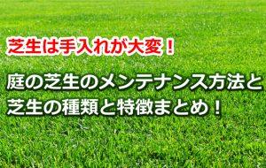 芝のメンテナンス
